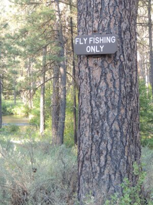 Metolius Lewis Fly Fishing Only